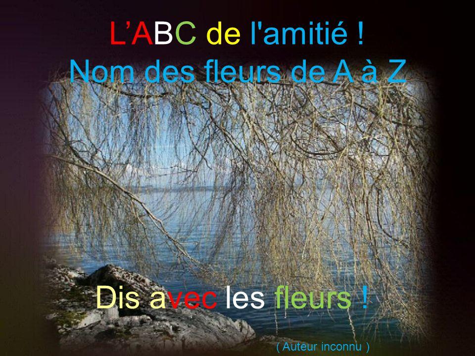 L'ABC de l amitié ! Nom des fleurs de A à Z Dis avec les fleurs !