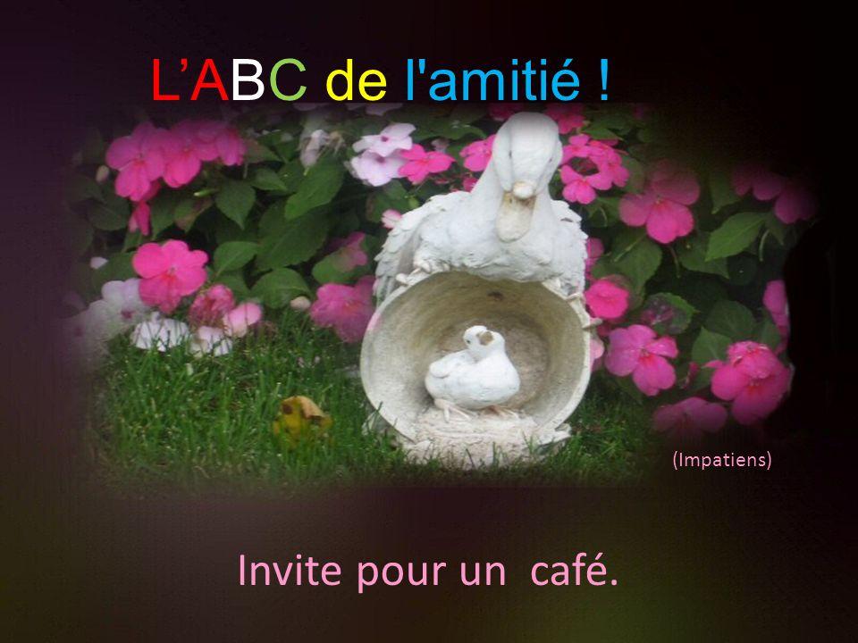L'ABC de l amitié ! (Impatiens) Invite pour un café.