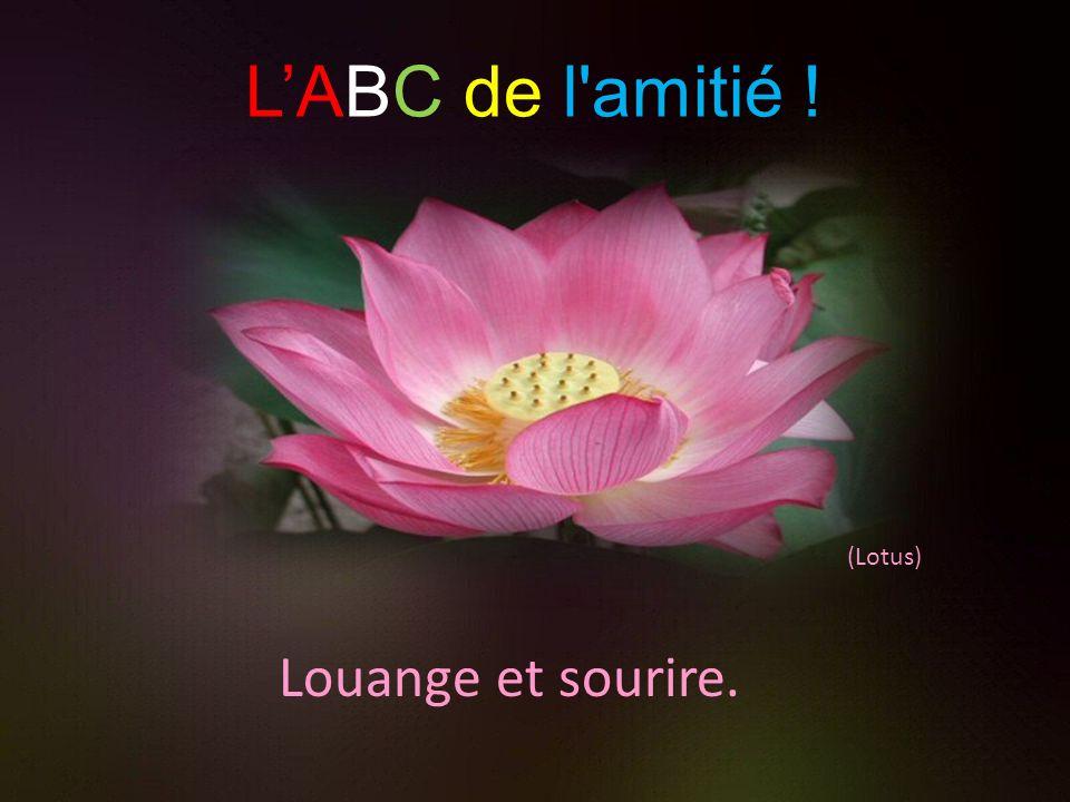 L'ABC de l amitié ! (Lotus) Louange et sourire.