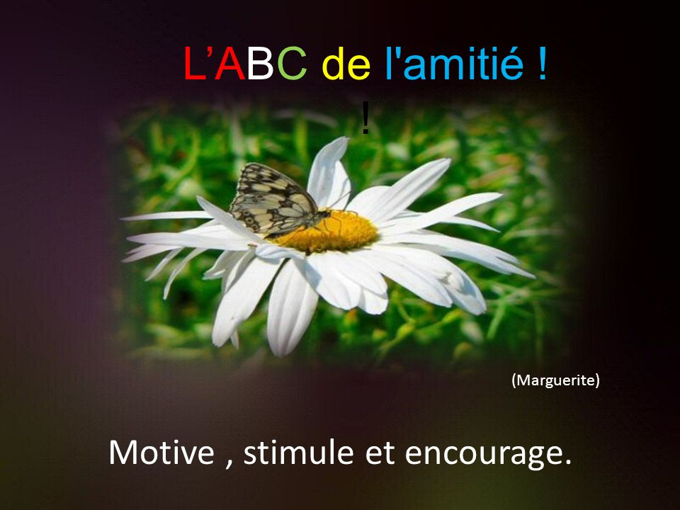 Motive , stimule et encourage.