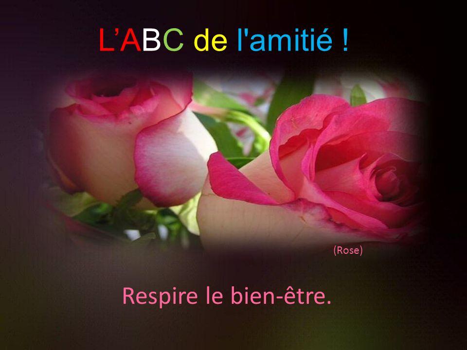 L'ABC de l amitié ! (Rose) Respire le bien-être.