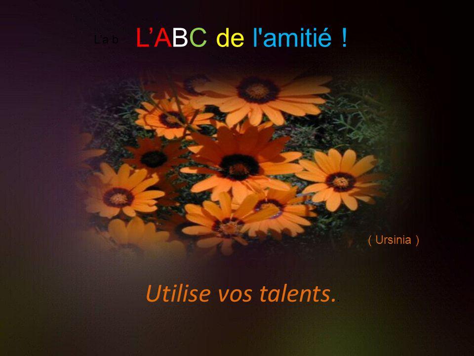 L'ABC de l amitié ! L'a b ( Ursinia ) Utilise vos talents..