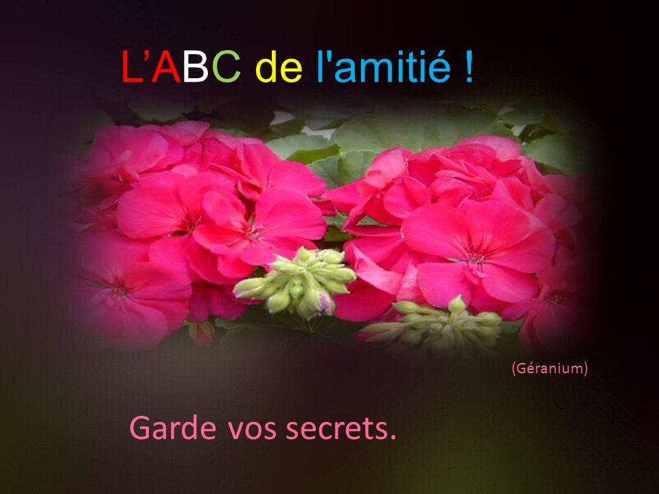 L'ABC de l amitié ! (Géranium) Garde vos secrets.