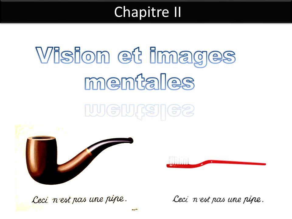 Vision et images mentales