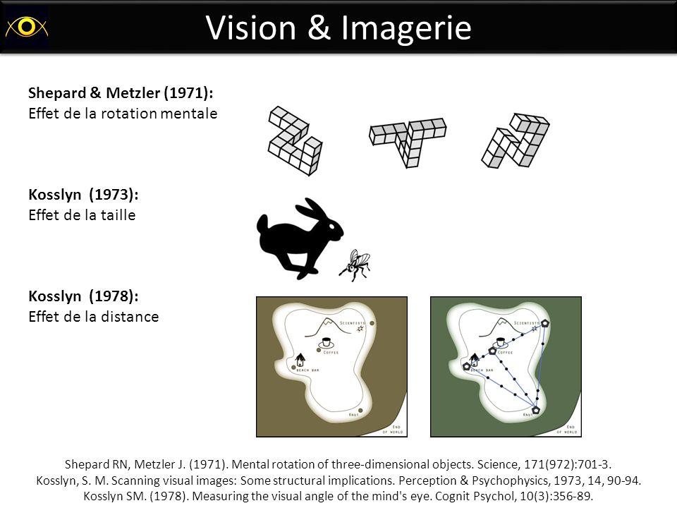 Vision & Imagerie Shepard & Metzler (1971):
