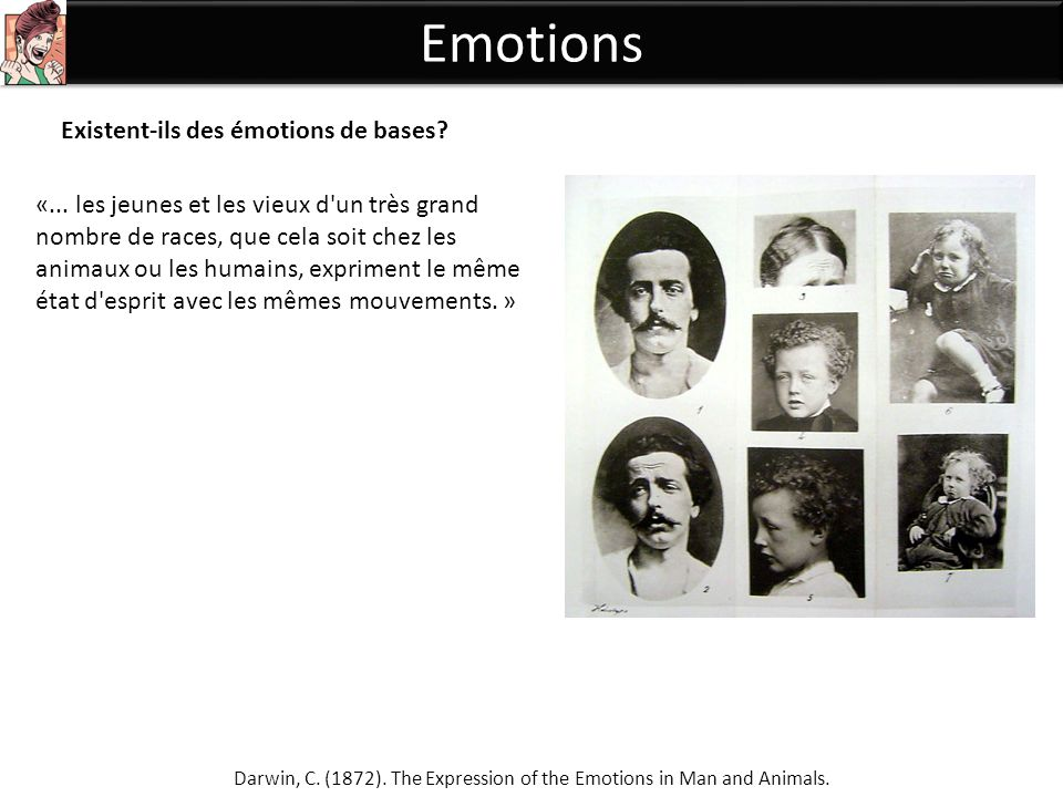 Darwin, C. (1872). The Expression of the Emotions in Man and Animals.