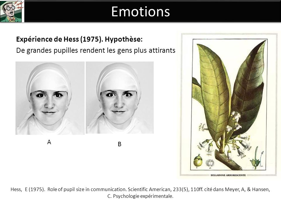 Emotions Expérience de Hess (1975). Hypothèse: