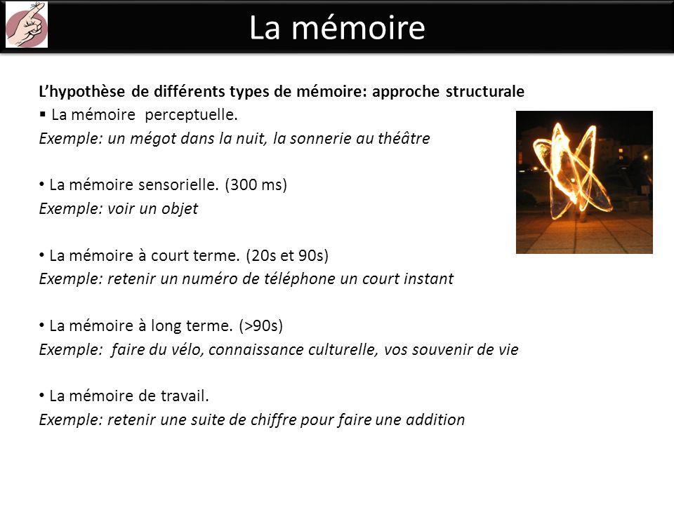 La mémoire L'hypothèse de différents types de mémoire: approche structurale. La mémoire perceptuelle.