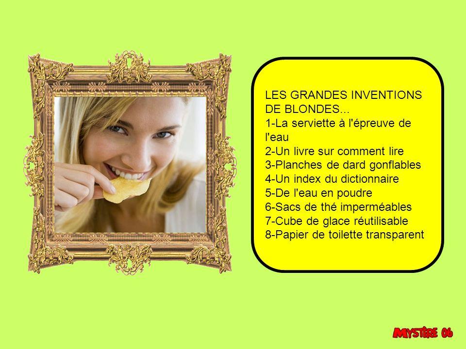 LES GRANDES INVENTIONS DE BLONDES