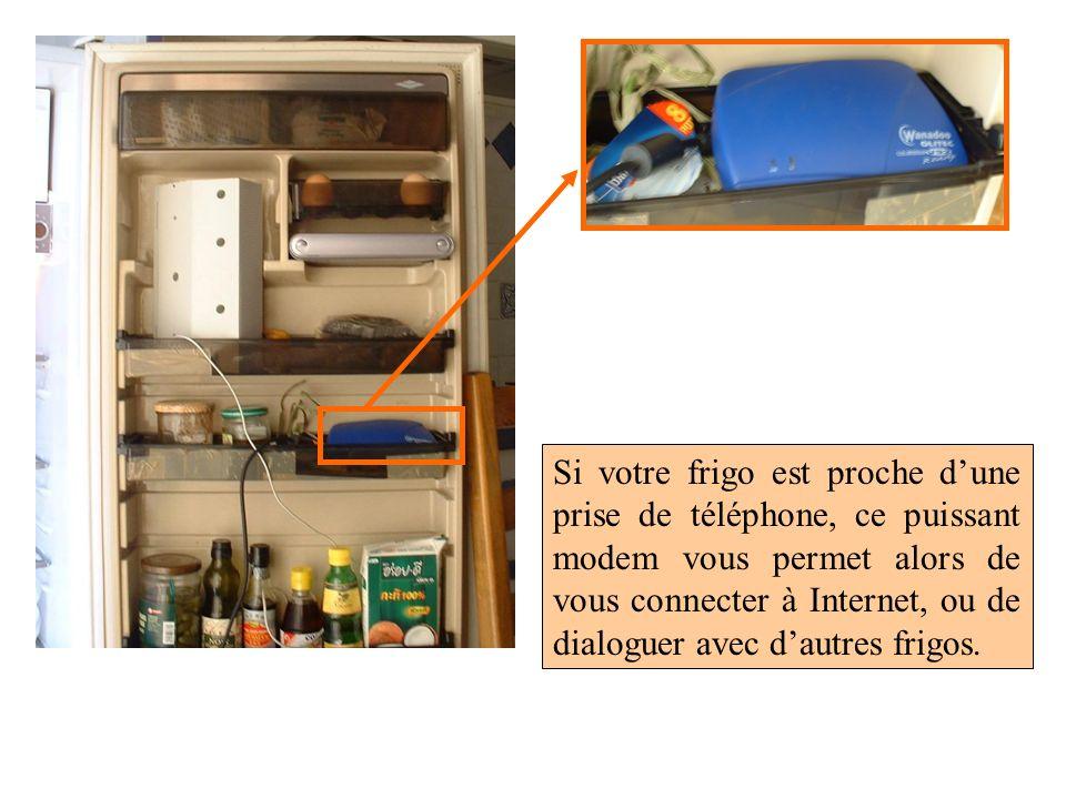 Si votre frigo est proche d'une prise de téléphone, ce puissant modem vous permet alors de vous connecter à Internet, ou de dialoguer avec d'autres frigos.