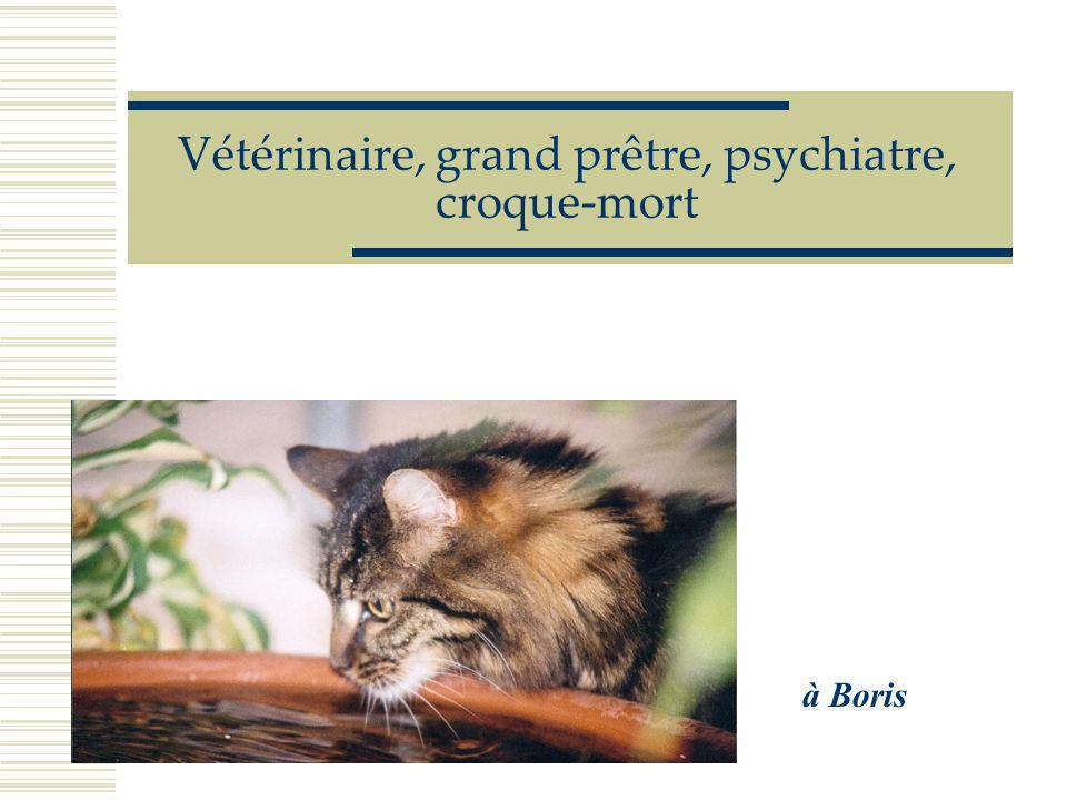 Vétérinaire, grand prêtre, psychiatre, croque-mort