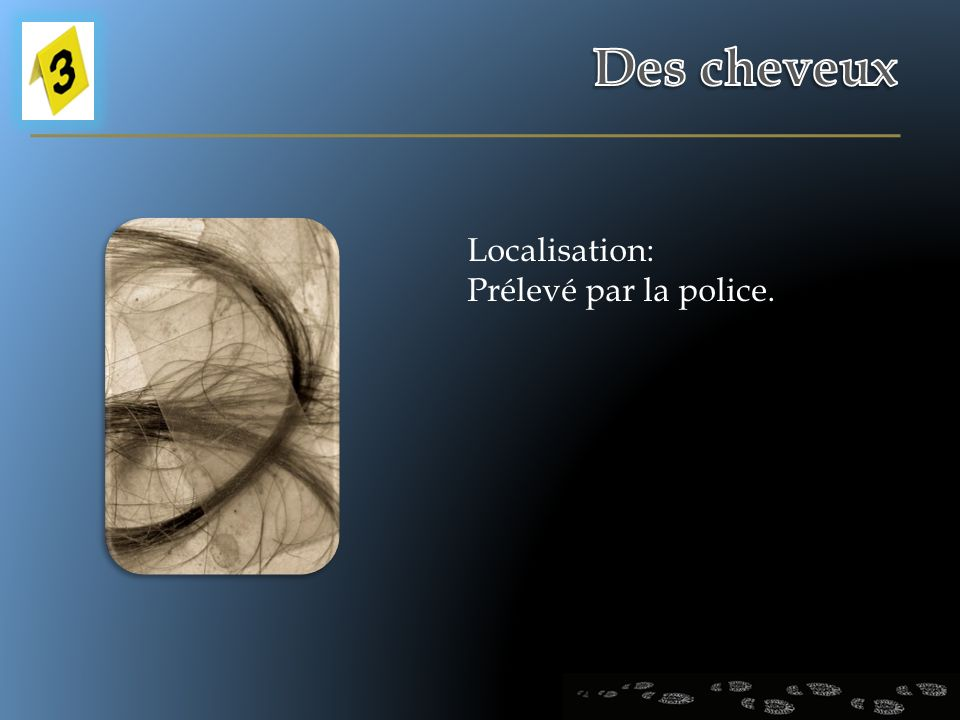 Des cheveux Localisation: Prélevé par la police.