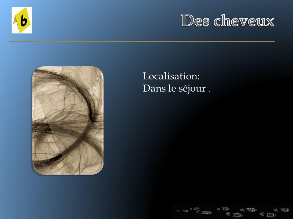 Des cheveux Localisation: Dans le séjour .