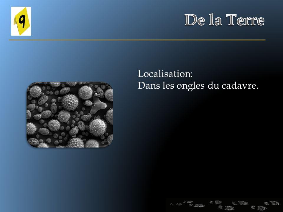 De la Terre Localisation: Dans les ongles du cadavre.