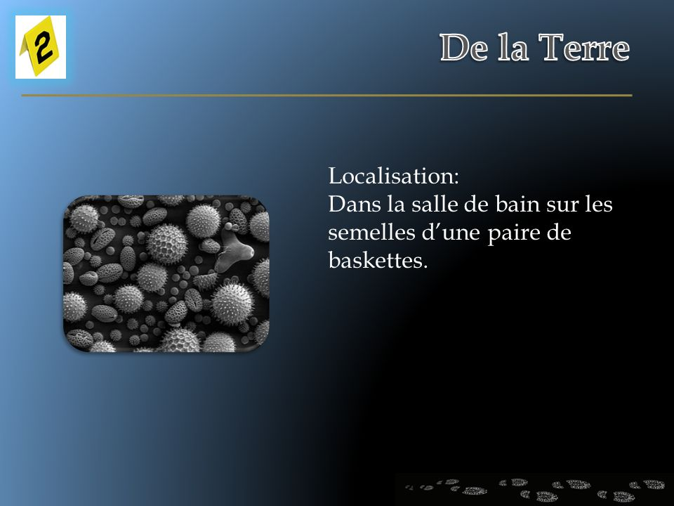 De la Terre Localisation: