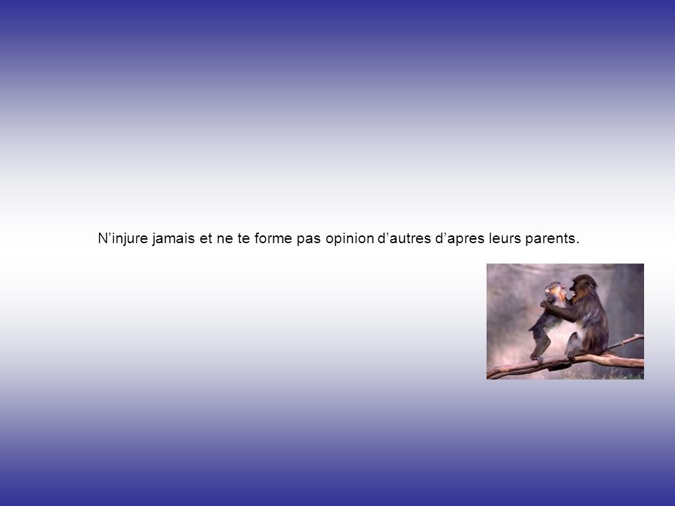 N'injure jamais et ne te forme pas opinion d'autres d'apres leurs parents.