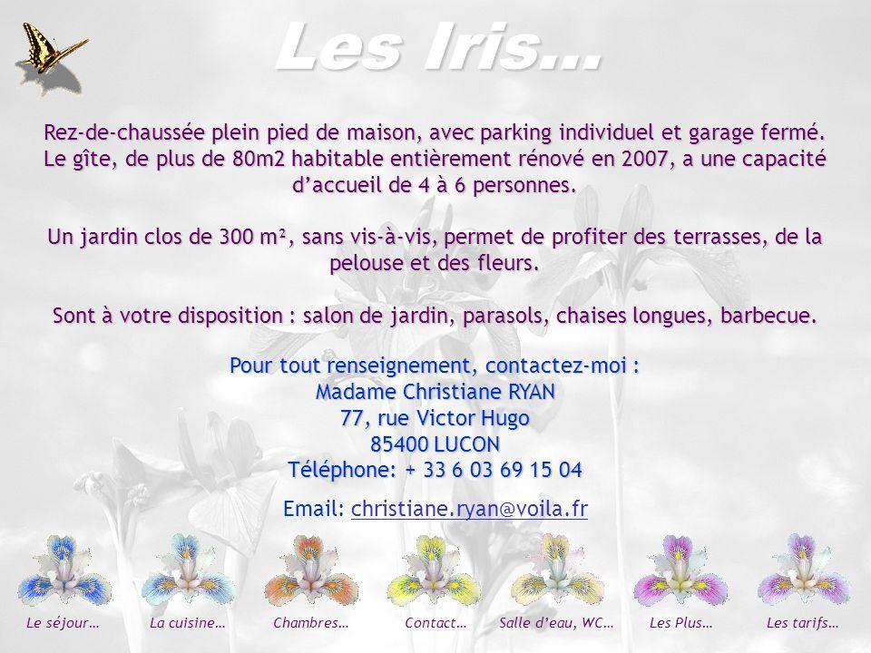 Les Iris…