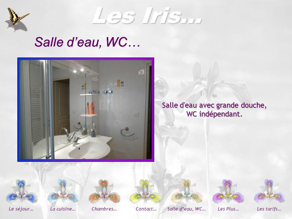 Les Iris… Les Iris… Salle d'eau, WC… Salle d'eau, WC… Salle d'eau, WC…