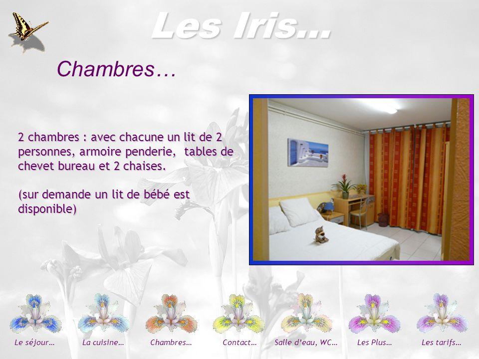 Les Iris… Chambres… 2 chambres : avec chacune un lit de 2 personnes, armoire penderie, tables de chevet bureau et 2 chaises.