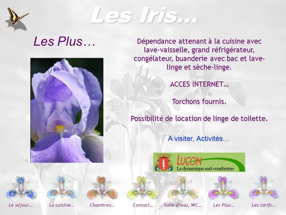 Les Iris… Les Plus… Dépendance attenant à la cuisine avec lave-vaisselle, grand réfrigérateur,