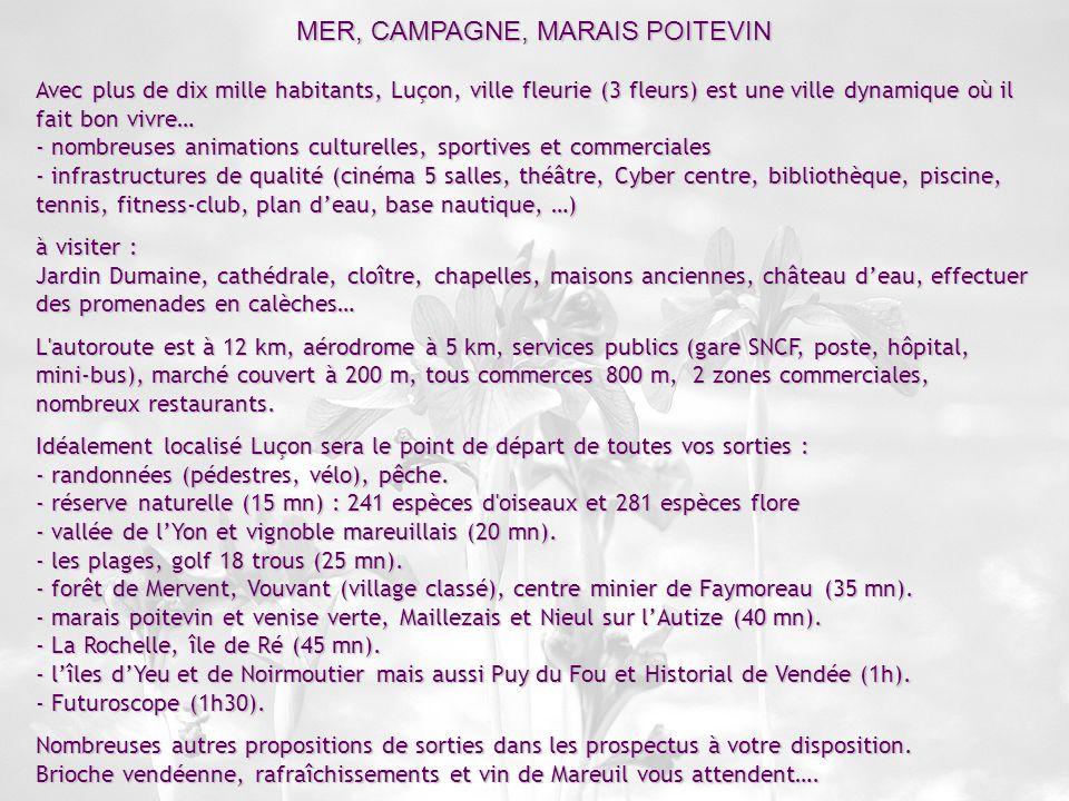 MER, CAMPAGNE, MARAIS POITEVIN