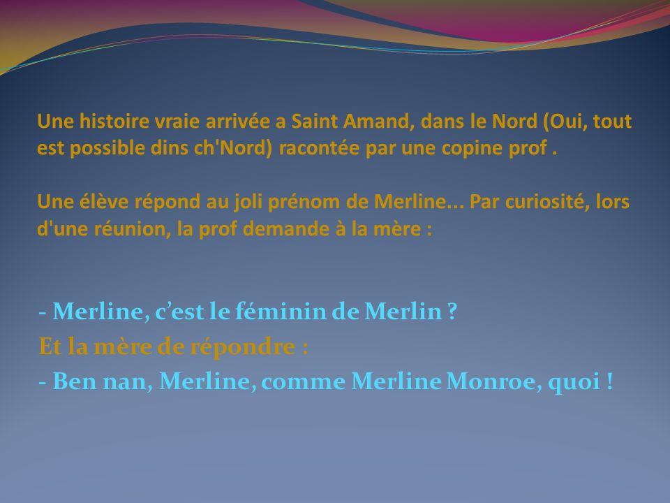 Une histoire vraie arrivée a Saint Amand, dans le Nord (Oui, tout est possible dins ch Nord) racontée par une copine prof . Une élève répond au joli prénom de Merline... Par curiosité, lors d une réunion, la prof demande à la mère :