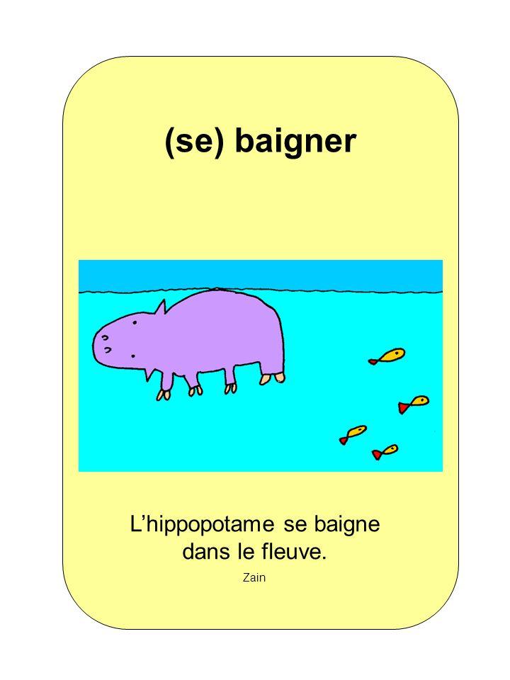 L'hippopotame se baigne dans le fleuve.