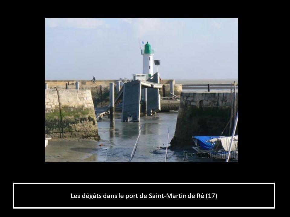Les dégâts dans le port de Saint-Martin de Ré (17)