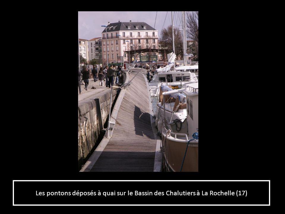 Les pontons déposés à quai sur le Bassin des Chalutiers à La Rochelle (17)