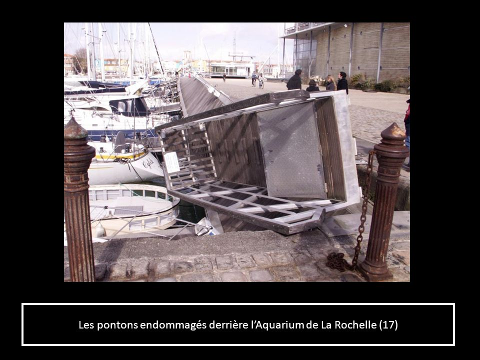 Les pontons endommagés derrière l'Aquarium de La Rochelle (17)