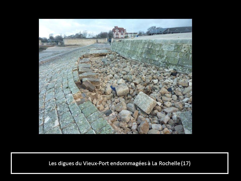 Les digues du Vieux-Port endommagées à La Rochelle (17)
