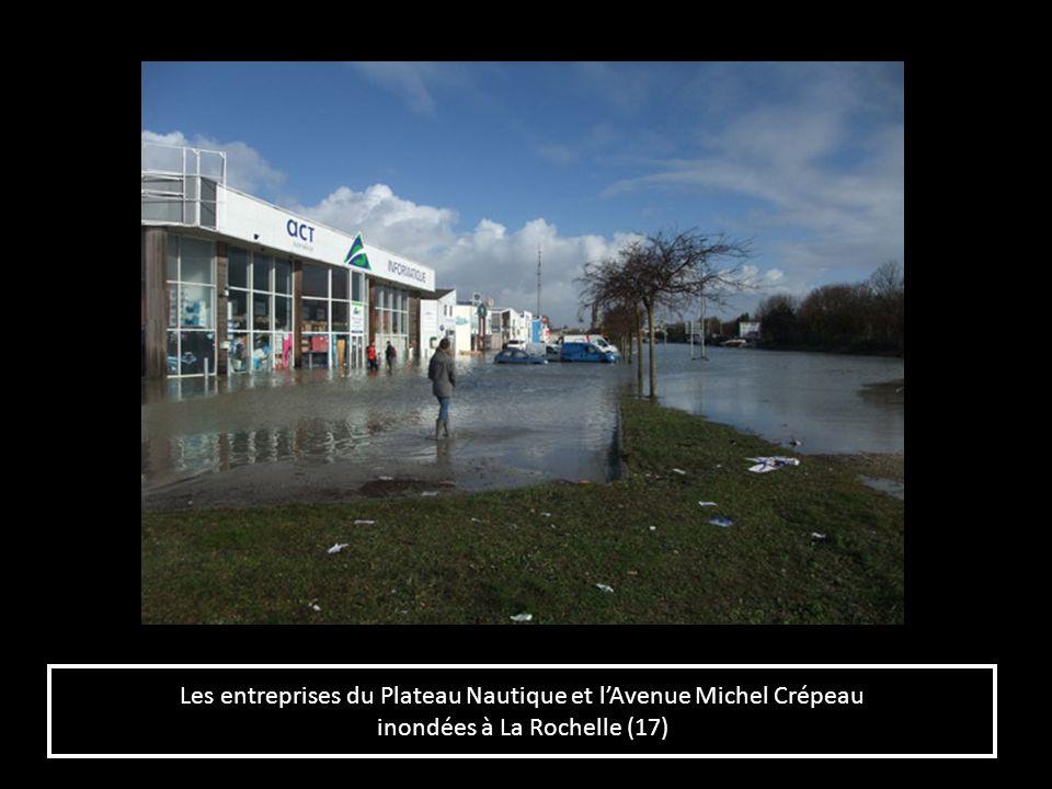Les entreprises du Plateau Nautique et l'Avenue Michel Crépeau