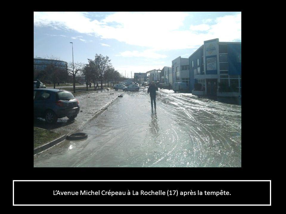 L'Avenue Michel Crépeau à La Rochelle (17) après la tempête.