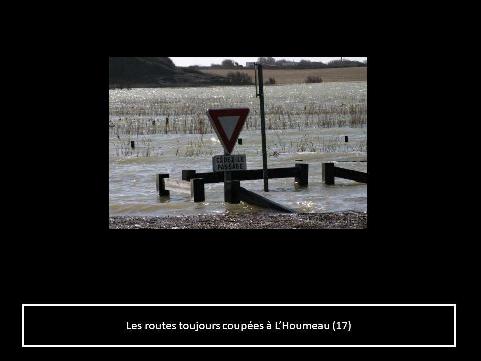 Les routes toujours coupées à L'Houmeau (17)