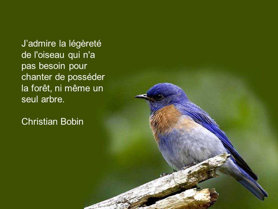 J'admire la légèreté de l oiseau qui n a pas besoin pour chanter de posséder la forêt, ni même un seul arbre.