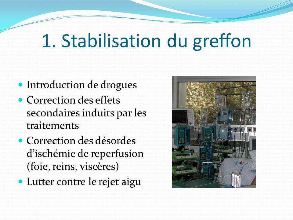 1. Stabilisation du greffon