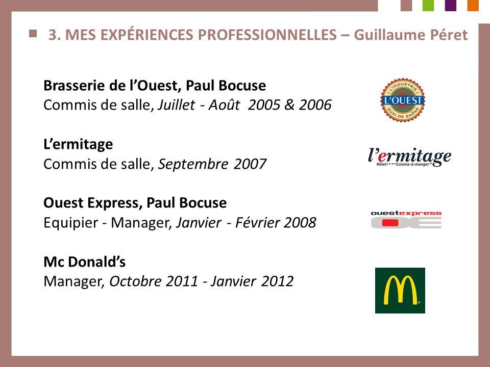 3. MES EXPÉRIENCES PROFESSIONNELLES – Guillaume Péret