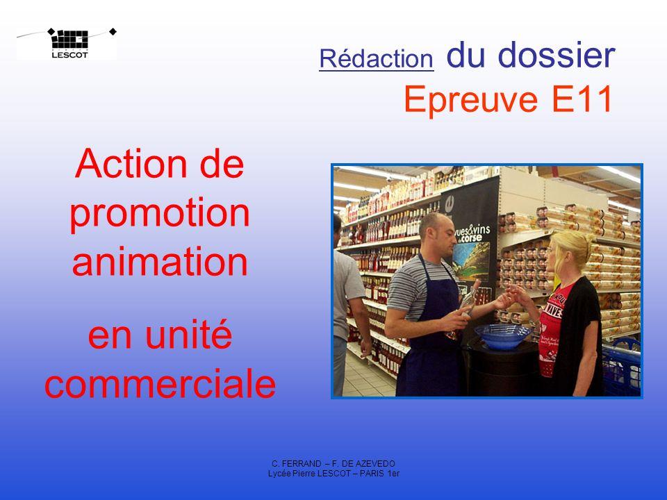 Rédaction du dossier Epreuve E11