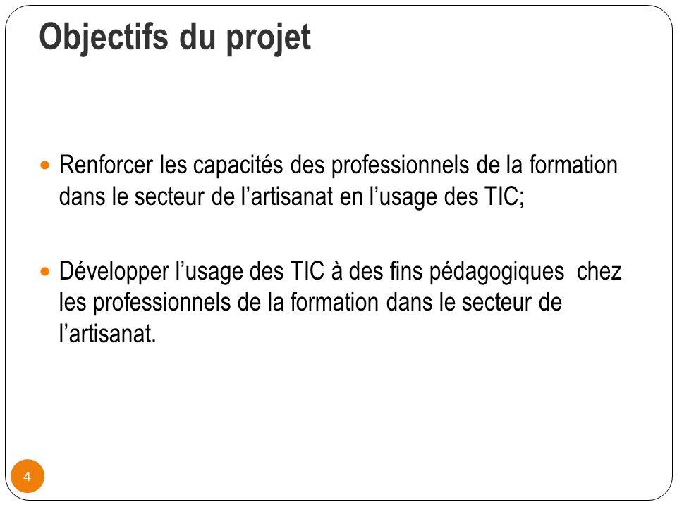Objectifs du projet Renforcer les capacités des professionnels de la formation dans le secteur de l'artisanat en l'usage des TIC;