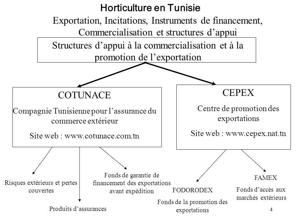Horticulture en Tunisie