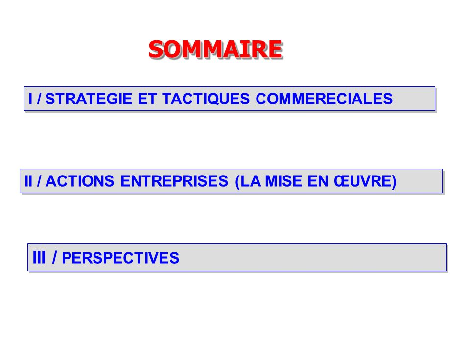 SOMMAIRE III / PERSPECTIVES I / STRATEGIE ET TACTIQUES COMMERECIALES