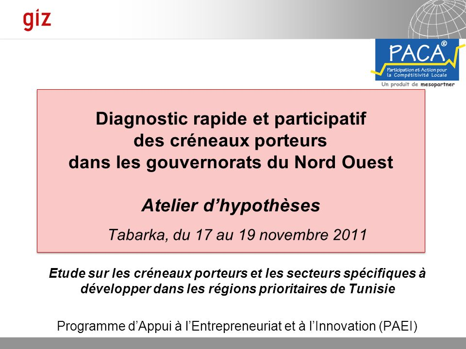 Programme d'Appui à l'Entrepreneuriat et à l'Innovation (PAEI)