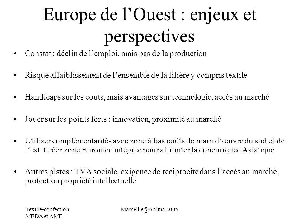 Europe de l'Ouest : enjeux et perspectives