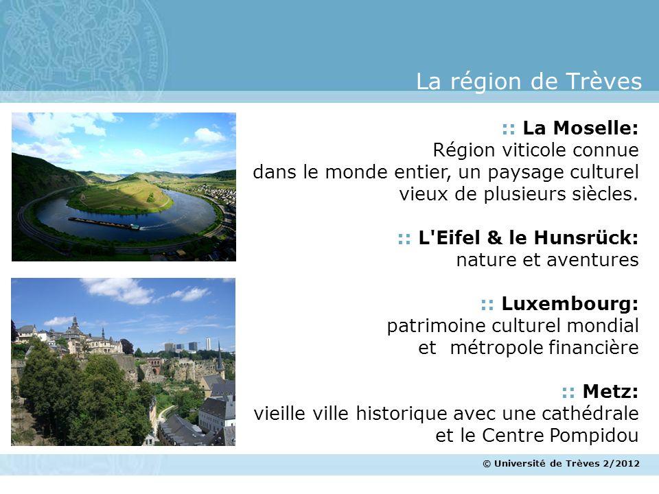 La région de Trèves :: La Moselle: Région viticole connue