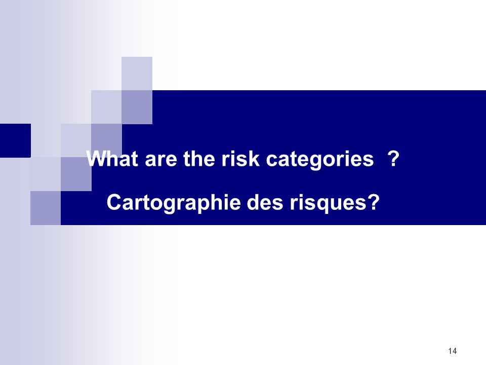 What are the risk categories Cartographie des risques