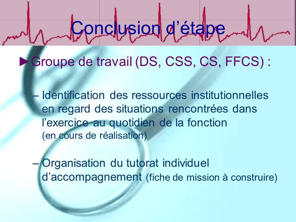 Conclusion d'étape Groupe de travail (DS, CSS, CS, FFCS) :