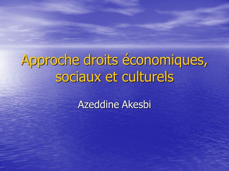 Approche droits économiques, sociaux et culturels