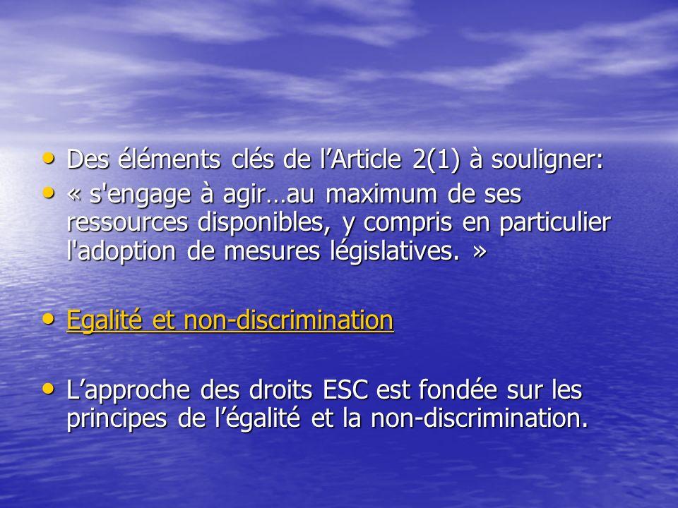 Des éléments clés de l'Article 2(1) à souligner: