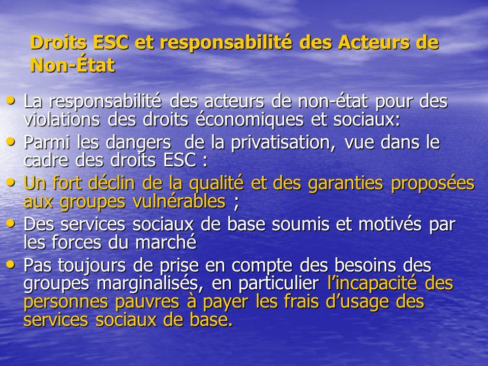Droits ESC et responsabilité des Acteurs de Non-État