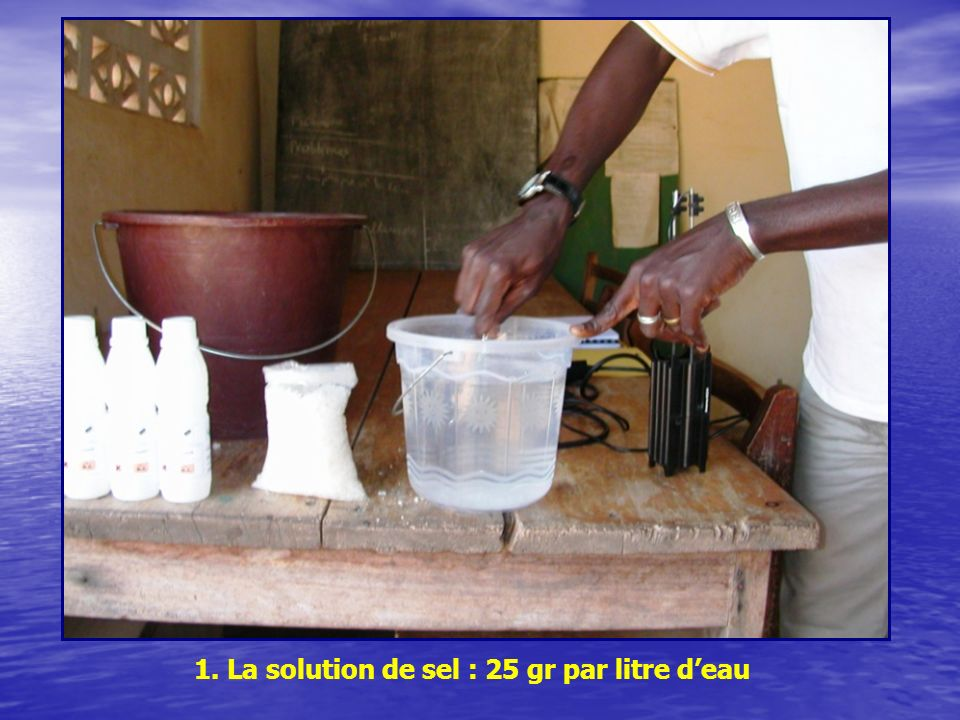 1. La solution de sel : 25 gr par litre d'eau